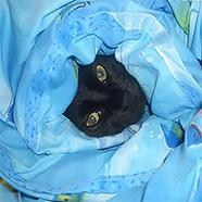 Одеяла лёгкие и тёплые