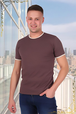 Мужская футболка 1763