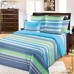 Постельное белье Дакота 3 голубое из бязи