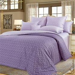 Комплект постельного белья Этюд 9 фиолетовый из сатина